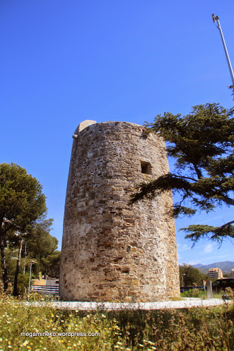 Torre Real (6)